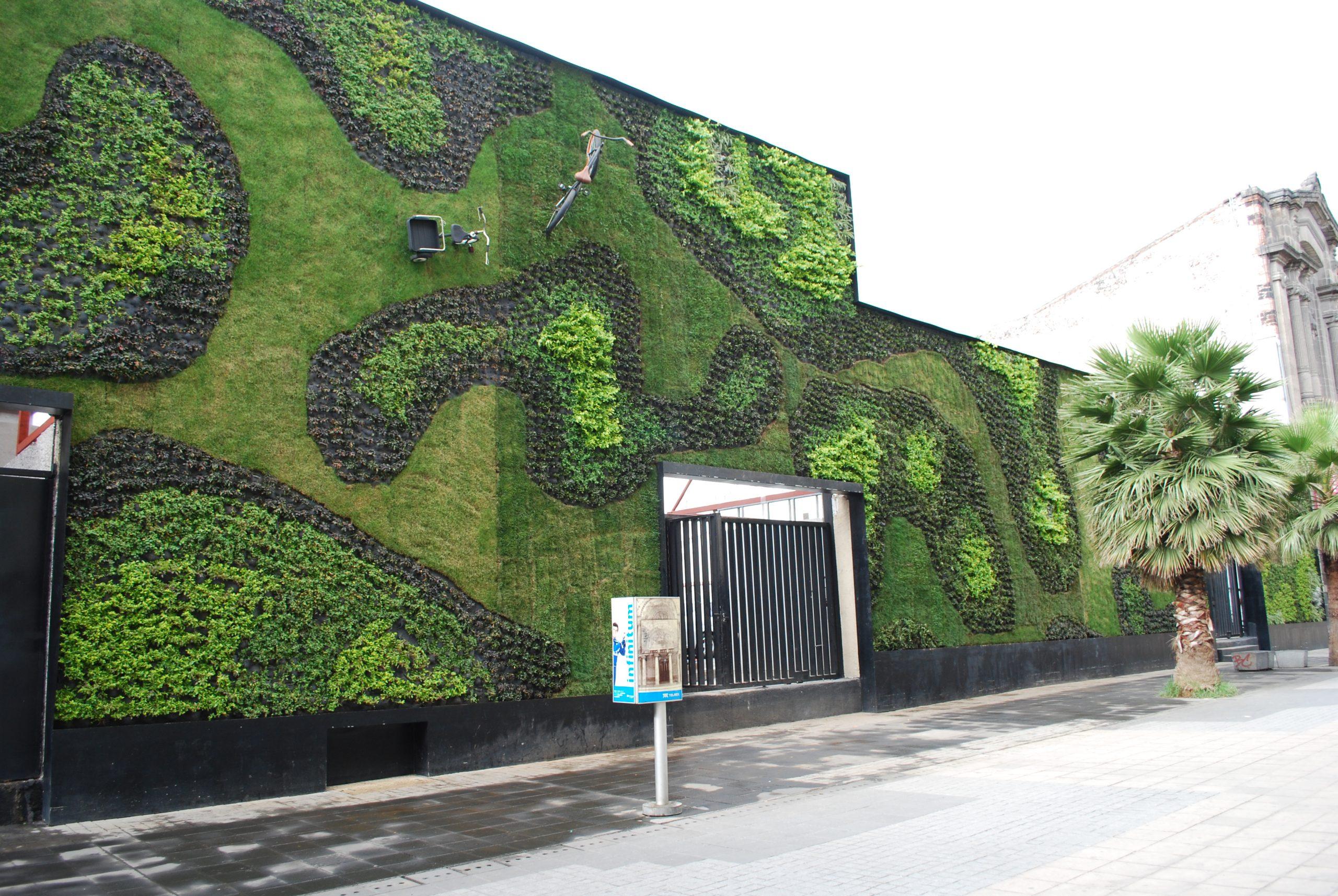 GreenWallUCSJ01