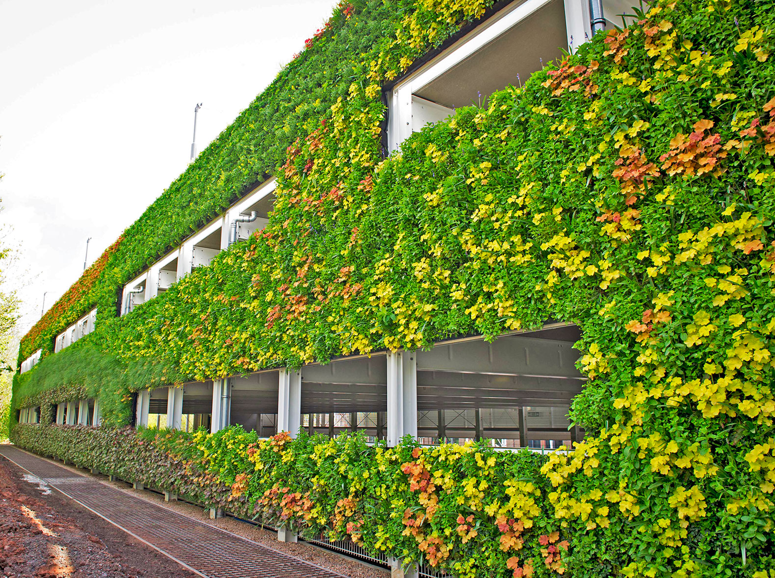 national-grid-europes-largest-living-wall