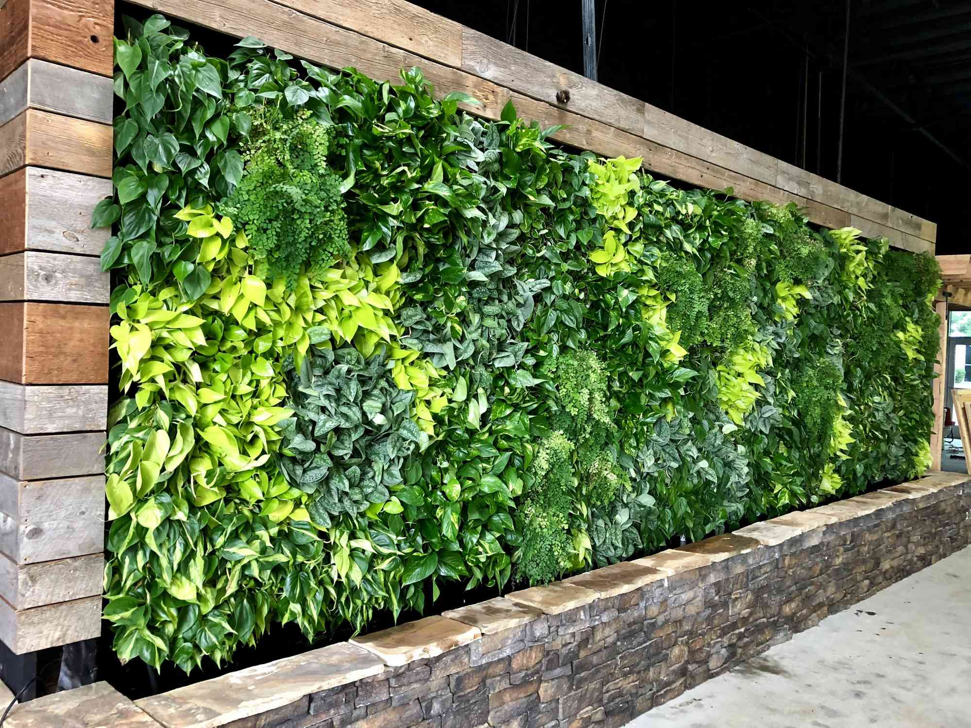 who-installs-living-walls-in-san-diego